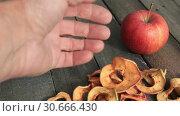 Купить «Рука мужчины и горсть сушеных яблок», видеоролик № 30666430, снято 28 апреля 2019 г. (c) Александр Романов / Фотобанк Лори