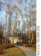 Купить «Москва, Измайловский парк, большое колесо обозрения», эксклюзивное фото № 30684230, снято 21 апреля 2019 г. (c) Alexei Tavix / Фотобанк Лори