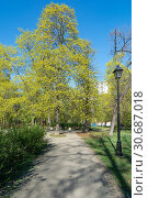 Москва, Семёновский парк (2019 год). Стоковое фото, фотограф Alexei Tavix / Фотобанк Лори