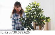 Купить «happy asian woman cleaning houseplant at home», видеоролик № 30689626, снято 25 апреля 2019 г. (c) Syda Productions / Фотобанк Лори