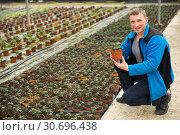 Купить «Man controlling quality of tomato seedlings», фото № 30696438, снято 9 апреля 2019 г. (c) Яков Филимонов / Фотобанк Лори