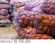 Купить «Сетки со свежим картофелем лежат на овощном складе», фото № 30726294, снято 16 сентября 2018 г. (c) Вячеслав Палес / Фотобанк Лори