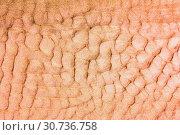 Купить «Corrugated sand texture», фото № 30736758, снято 17 августа 2018 г. (c) Акиньшин Владимир / Фотобанк Лори