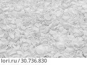 Купить «Large number of white broken plates as a background or backdrop», фото № 30736830, снято 26 марта 2019 г. (c) Олег Белов / Фотобанк Лори