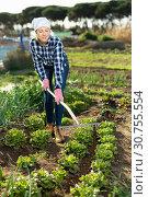 Купить «Slender female gardener with rake», фото № 30755554, снято 7 марта 2019 г. (c) Яков Филимонов / Фотобанк Лори