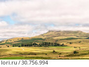 Купить «Farm landscape on the R617-road between Underberg and Kokstad», фото № 30756994, снято 26 марта 2018 г. (c) easy Fotostock / Фотобанк Лори