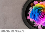 Купить «Close up macro shot of multicolored articial rose.», фото № 30760778, снято 20 мая 2019 г. (c) Pavel Biryukov / Фотобанк Лори