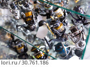 Image of stand with new fine baitcasting reel. Стоковое фото, фотограф Яков Филимонов / Фотобанк Лори