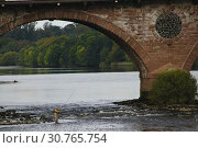Купить «SCOTLAND Perth -- 29 Sep 2014 -- Fly fishing on the River Tay in Perth Scotland UK -- Picture by Jonathan Mitchell/Atlas Photo Archive.», фото № 30765754, снято 29 сентября 2014 г. (c) age Fotostock / Фотобанк Лори