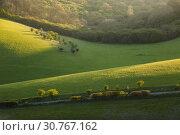 Купить «Early spring in South Downs National Park, West Sussex, England.», фото № 30767162, снято 10 апреля 2019 г. (c) age Fotostock / Фотобанк Лори