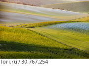 Купить «Sunrise in South Downs National Park in West Sussex, England.», фото № 30767254, снято 13 апреля 2019 г. (c) age Fotostock / Фотобанк Лори