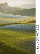 Купить «Sunrise in South Downs National Park in West Sussex, England.», фото № 30767262, снято 13 апреля 2019 г. (c) age Fotostock / Фотобанк Лори