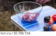 Купить «Men slicing meat for BBQ», видеоролик № 30788154, снято 2 мая 2019 г. (c) Игорь Жоров / Фотобанк Лори