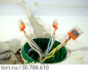 Купить «Разводка электрического кабеля в контактной коробке с помощью клемников», фото № 30788610, снято 27 сентября 2018 г. (c) Вячеслав Палес / Фотобанк Лори