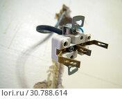 Купить «Внутренняя часть электрической розетки висит на кабеле», фото № 30788614, снято 27 сентября 2018 г. (c) Вячеслав Палес / Фотобанк Лори