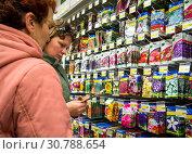 Купить «Женщины выбирают семена цветов», фото № 30788654, снято 14 октября 2018 г. (c) Вячеслав Палес / Фотобанк Лори