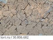 Купить «Старая деревянная стена, обитая прутьями и обмазанная глиной, фон», фото № 30806682, снято 2 мая 2019 г. (c) Игорь Долгов / Фотобанк Лори