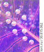 Background in the form of purple leaf closeup. Стоковая иллюстрация, иллюстратор Юлия Фаранчук / Фотобанк Лори