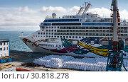 Panoramic view of Cruise Liner Norwegian Jewel at pier in sea port (2019 год). Редакционное фото, фотограф А. А. Пирагис / Фотобанк Лори