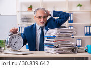Купить «Aged male employee working in the office», фото № 30839642, снято 18 декабря 2018 г. (c) Elnur / Фотобанк Лори