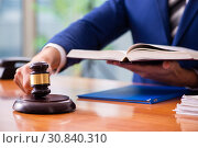 Young male judge sitting in courtroom. Стоковое фото, фотограф Elnur / Фотобанк Лори