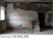 Купить «Балашиха, интерьер разрушенной бани на Флерова», эксклюзивное фото № 30842298, снято 29 мая 2019 г. (c) Дмитрий Неумоин / Фотобанк Лори