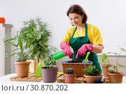 Купить «Female gardener with plants indoors», фото № 30870202, снято 28 ноября 2018 г. (c) Elnur / Фотобанк Лори