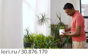 Купить «indian man taking care of houseplants at home», видеоролик № 30876170, снято 27 мая 2019 г. (c) Syda Productions / Фотобанк Лори