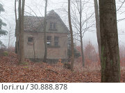 Купить «Haus im nebligen Wald stehend», фото № 30888878, снято 18 июля 2019 г. (c) age Fotostock / Фотобанк Лори