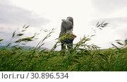 Купить «Man and woman hugging in the middle of a wheat field.», видеоролик № 30896534, снято 17 июня 2019 г. (c) Константин Шишкин / Фотобанк Лори