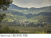 Typical hilly landscape of hills hills in Italy in Veneto: Location Battaglia Terme. Стоковое фото, фотограф Filippo Carlot Photograpy - 320 1560780 - pippocar / easy Fotostock / Фотобанк Лори