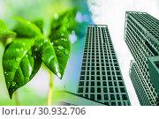 Купить «Зеленые растения на фоне новых жилых зданий», фото № 30932706, снято 16 сентября 2019 г. (c) Сергеев Валерий / Фотобанк Лори