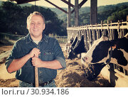 Купить «senior man owner of dairy farm», фото № 30934186, снято 24 октября 2017 г. (c) Яков Филимонов / Фотобанк Лори