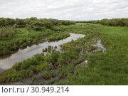 Река Ключевая. Приток Зеи (2019 год). Редакционное фото, фотограф Валерий Акулич / Фотобанк Лори