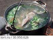Купить «Уха из лосося (красной рыбы) готовится в чугунном котле на костре», фото № 30950626, снято 21 июня 2019 г. (c) А. А. Пирагис / Фотобанк Лори