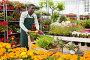 Купить «Flower seller carrying trolley with plants», фото № 30951198, снято 22 мая 2019 г. (c) Яков Филимонов / Фотобанк Лори