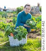 Купить «Female gardener with greens», фото № 30951442, снято 7 марта 2019 г. (c) Яков Филимонов / Фотобанк Лори