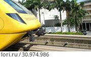 Купить «Monorail train on Sentosa island», видеоролик № 30974986, снято 24 ноября 2018 г. (c) Игорь Жоров / Фотобанк Лори