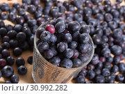Купить «Fresh delicious blueberries on wooden table», фото № 30992282, снято 7 июля 2020 г. (c) Яков Филимонов / Фотобанк Лори