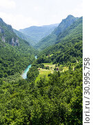 Купить «Mountains and Tara river canyon in Durmitor, Montenegro», фото № 30995758, снято 14 июня 2019 г. (c) Володина Ольга / Фотобанк Лори