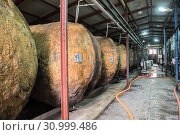 Купить «Old fermentation tanks for wine production on the plant Kindzmarauli Corporation», фото № 30999486, снято 1 октября 2018 г. (c) Юлия Бабкина / Фотобанк Лори