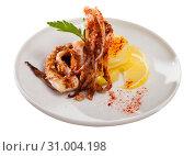 Купить «Delicious cooked squid or octopus tentacles with lemon and parsley on a plate», фото № 31004198, снято 26 июня 2019 г. (c) Яков Филимонов / Фотобанк Лори