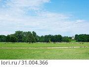Английский сад (нем. Englischer Garten) или Английский парк в солнечный день летом. Мюнхен. Германия (2019 год). Редакционное фото, фотограф E. O. / Фотобанк Лори