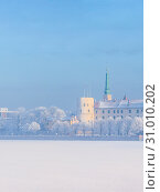 Купить «Winter skyline of Latvian capital city Riga Old town», фото № 31010202, снято 31 января 2019 г. (c) Ints VIkmanis / Фотобанк Лори