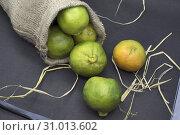 Купить «Green orange in jute bag.», фото № 31013602, снято 28 февраля 2019 г. (c) age Fotostock / Фотобанк Лори