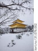 Купить «Kyoto Golden Temple with snow», фото № 31076002, снято 15 января 2017 г. (c) easy Fotostock / Фотобанк Лори