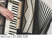 Купить «Live music background. Accordionist», фото № 31085530, снято 18 мая 2019 г. (c) EugeneSergeev / Фотобанк Лори