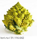 Купить «A Romanesco broccoli (also known as Roman cauliflower) with visually striking fractal form on a white background», фото № 31116642, снято 2 марта 2018 г. (c) easy Fotostock / Фотобанк Лори