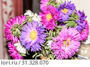 Купить «Background with lots of colorful flowers. Red, pink, purple, brown, yellow, Orange, red. Spring backdrop, pattern or texture. Beautiful flowers background for wedding scene. Copy space room for text», фото № 31328070, снято 14 января 2019 г. (c) easy Fotostock / Фотобанк Лори