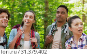 Купить «friends with backpacks on hike talking in forest», видеоролик № 31379402, снято 29 июня 2019 г. (c) Syda Productions / Фотобанк Лори